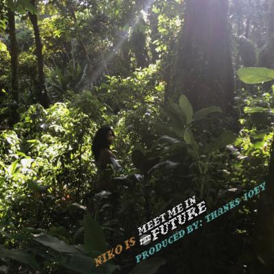 Listen Now: NIKO IS - Meet Me in the Future [prod. Thanks Joey]