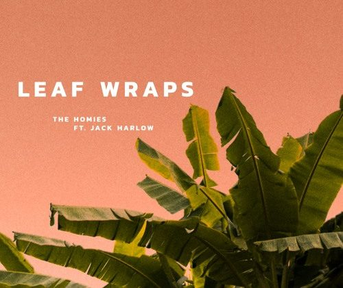 Watch Now: The Homies - Leaf Wraps (feat. Jack Harlow) [prod. 2forwOyNE]